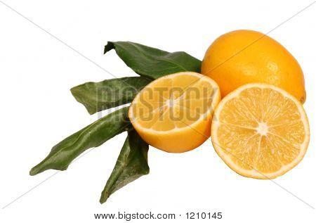 Juicy Delicious Meyer Lemons