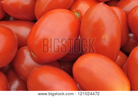 Background tomatoes