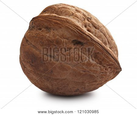 Single shelled whole walnut (edible seed of tree of Juglans regia). Clipping paths for both nut and shadow infinite depth of field poster