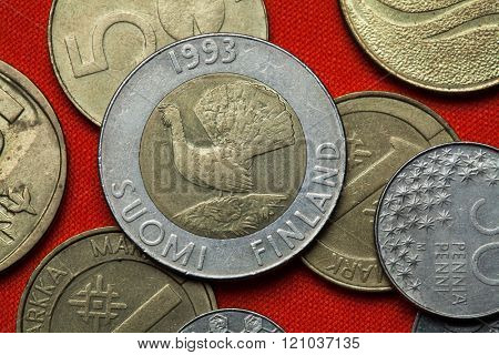 Coins of Finland. Wood grouse (Tetrao urogallus) depicted in the Finnish 10 markka coin (1993). poster