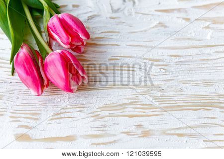 Pink Spring Tulips On White Wood Table