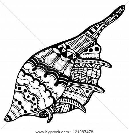 Zentangle Stylized Shell