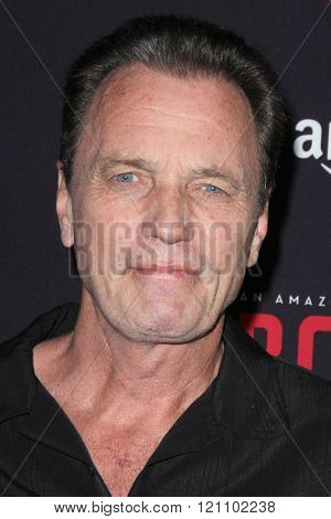 LOS ANGELES - MAR 3:  Gregory Scott Cummins at the Bosch Season 2 Premiere Screening at the Silver Screen Theater at the Pacific Design Center on March 3, 2016 in West Hollywood, CA