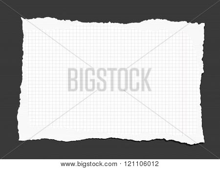 Piece of torn white lined notebook paper on black background