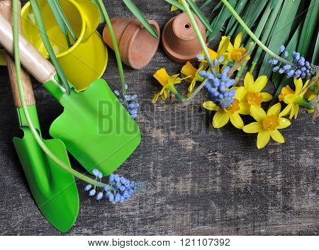 Spring Flowers And Tools