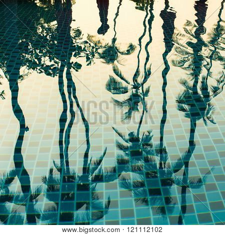 Silhouettes of the palm trees reflecting in the light blue water of the pool.