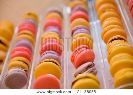 Row Of Different Color Of Macarons In Natural Light