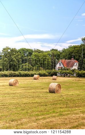 Farmland In Sweden