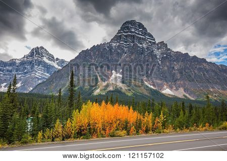 Autumn in Banff. Bright orange bush beside the road. Majestic mountains and glaciers on the background of the cloudy sky.  Canadian Rockies, Banff National Park