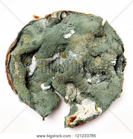 Mold macro