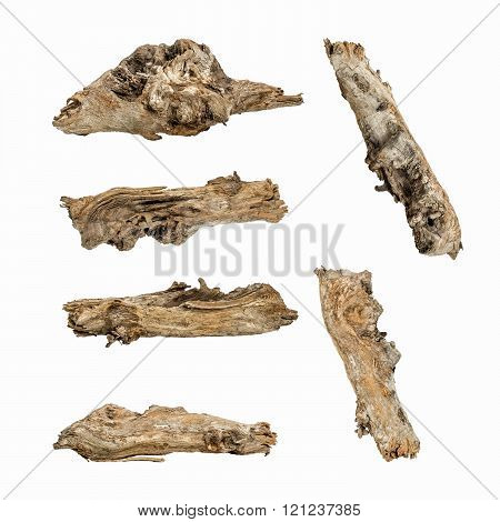 Macro wooden dried roots isolated on white background,