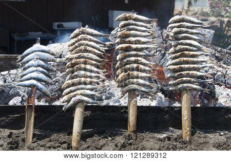Espeto de Sardinas, Grilled sardines. In Malaga, Andalusia.