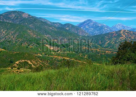 Lush green rural grasslands taken at the Mt Baldy foothills in Claremont, CA