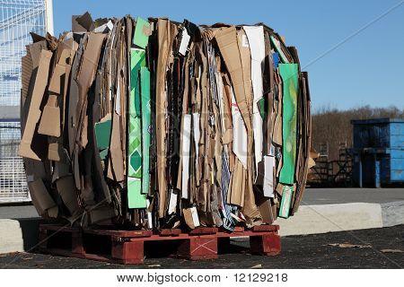 Recycling Cardboard Waste