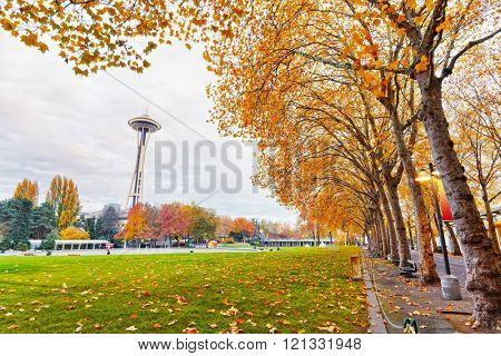 seattle,usa: landscape of seattle center near space needle in sunny day in Nov,11,2015