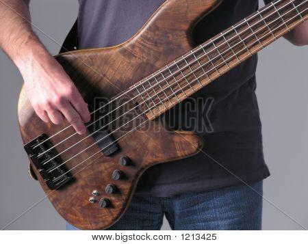 Bass Guitar Musician