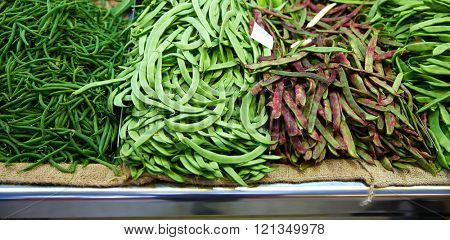 Varied green Beans from Mediterranean in Valencia Spain