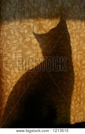 Catsilhouettecurtain_0163