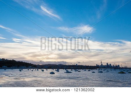 Panoramic view of Auckland's city background in twilight. poster