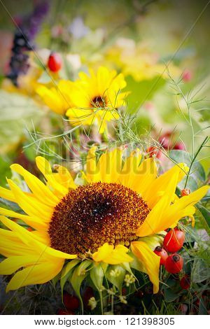 summer meadow with sunflowers and other flowers