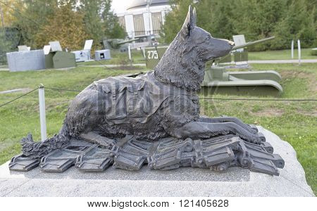 MOSCOW RUSSIA- OCTOBER 7- Frontline dog. During the Great Patriotic War were taken from the battlefield wounded 900000 in the Central Museum of the Great Patriotic War on October 7; 2015 in Mosco