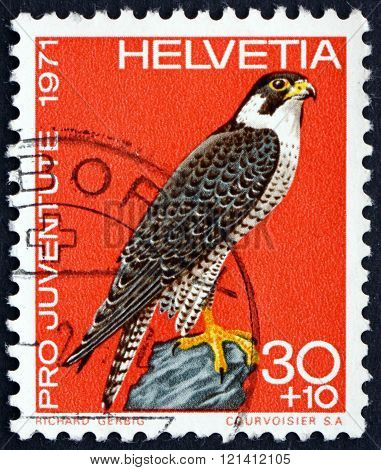 Postage Stamp Switzerland 1971 Peregrine Falcon, Bird Of Prey