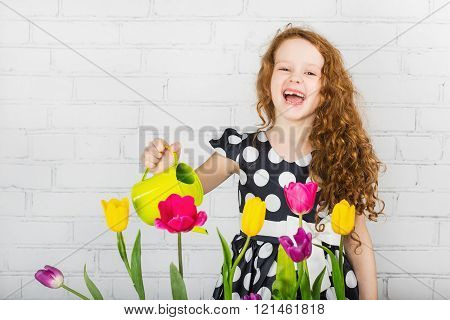 Toothless laughing little girl watering tulips flower from can.