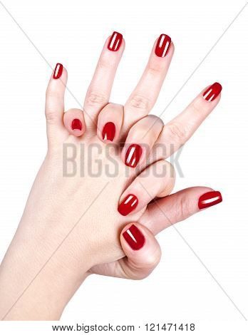 Woman's Hands With Red Nail Polish
