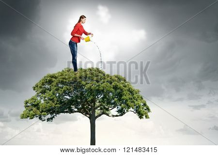 Agriculture and forestation concept