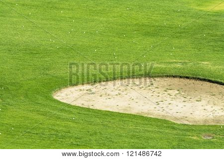 Close up of a golf course sand trap surrounded by golf balls during a sunny morning.