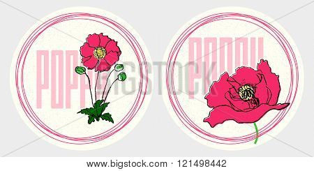 Hand drawn red poppy vintage round stickers set on textured background