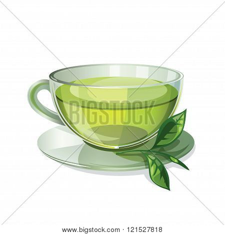 Glass Cup With Green Tea Isolated On White Background.