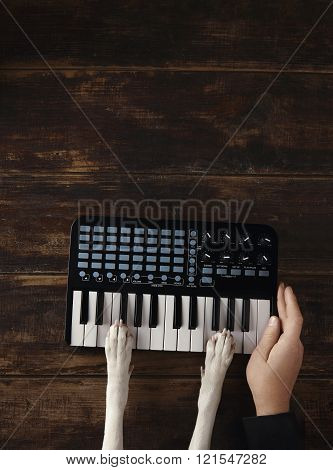 Dog Paws On Midi Piano Man Hand Near
