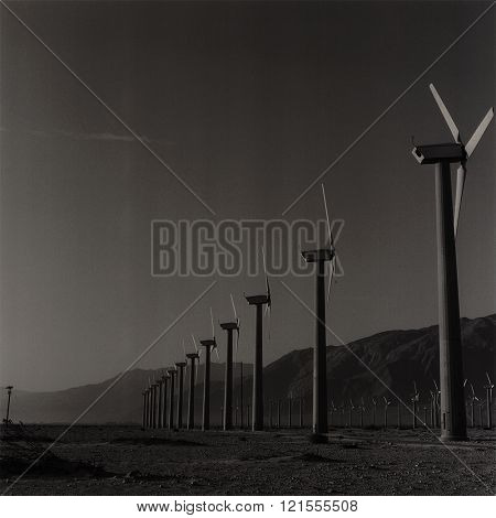 Windmills of Palm Springs