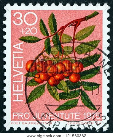 Postage stamp Switzerland 1975 Mountain Ash Berries, Forest Plant