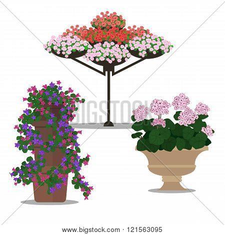 Set Of Floral Arrangememt