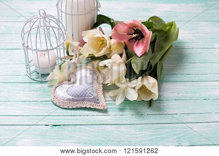 Pink Tulips And White  Narcissus Flowers, Decorative Heart, Candles In Bird Cages On Turquoise  Pain