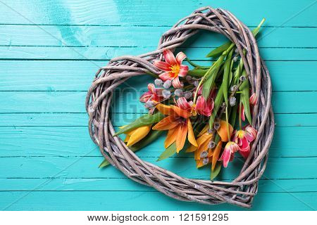 Spring  Tulips  Flowers  And   Decorative Heart