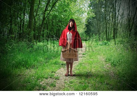 Little Riding Red Hood standing in a wood