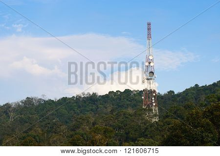 A telecommunications tower on top of a forest