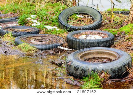 Car Tires In Nature