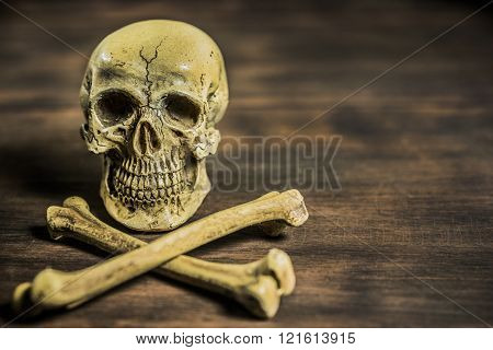 Still Life Photography With Human Skull And Crossbones