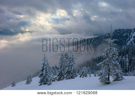 .winter Mountains And Fog