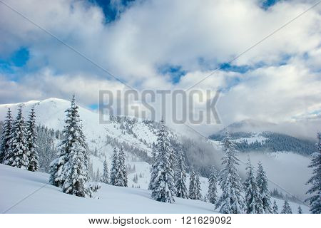 winter mountains and fog