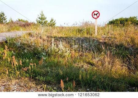 No dogs allowed - sign on the beach