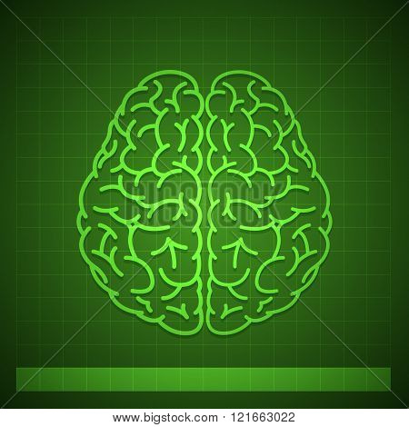 Human Brain Concept on Green Background