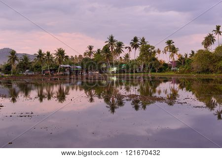 reflection of a country side during dawn