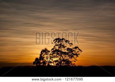 Sun rise in são paulo, brazil, South America