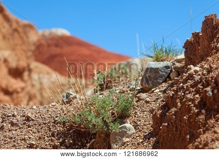 Red earth and blue sky in a wonderful location on the border of Altai and Mongolia