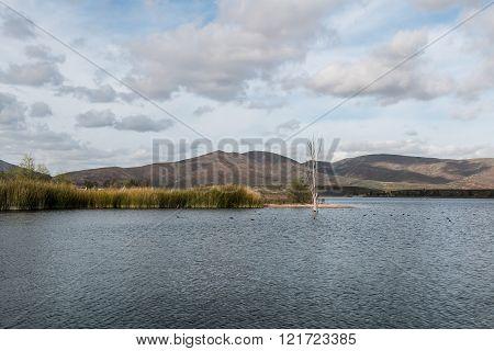 Lake at Otay Lakes County Park